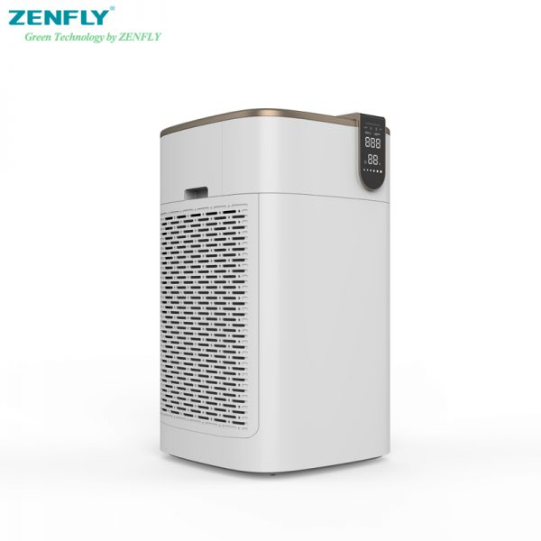 air cleaner home
